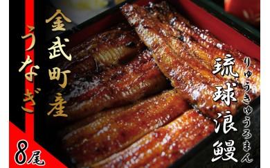 金武町産「琉球浪鰻」のうなぎ蒲焼セット 8尾