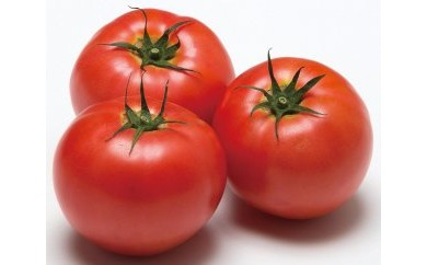 X010 白河高原野菜JA夢みなみ トマト4kg×1箱【20pt】