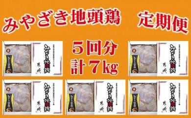 T60(5)-6901_都城産「みやざき地頭鶏」モモ肉たっぷり1.4kg(ギフト箱入り)定期便(5ヶ月)