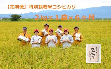 D13【定期便】特別栽培米コシヒカリ(2㎏×6ヵ月)