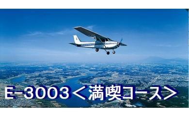 E-3003 遊覧飛行体験<満喫コース>