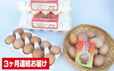 [№5533-0027]神代の味の再現 奥美濃古地鶏の卵【3ケ月連続お届け】