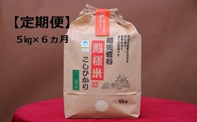 D16【新米!定期便】越後菅谷殿様米(5㎏×6ヵ月)