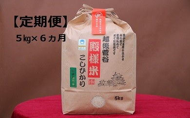 D16【定期便】越後菅谷殿様米(5㎏×6ヵ月)