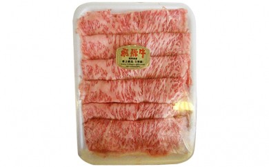 [№5533-0002]飛騨牛ロース肉(A5等級)約400g