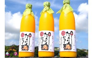 245~お母さんの手作り~徳之島産たんかんジュース