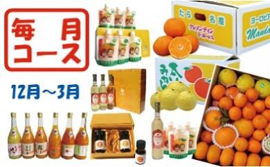 G-10 田島柑橘園ベストセレクション定期便コース(Ⅱ)