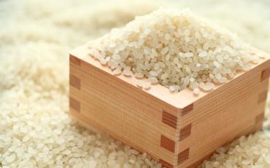 [№5706-0062]29年産米 幻のお米・自然栽培米「ササシグレ」20kg