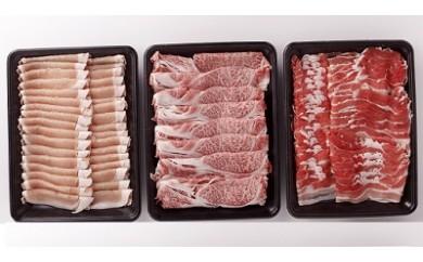 A504 九州産 牛・豚食べ比べ満腹セット