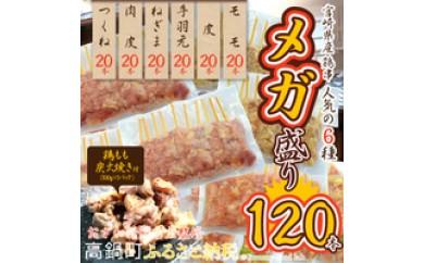 208_oz <宮崎県産鶏串 人気6種 120本メガ盛り+鶏もも炭火焼>1か月以内に順次出荷