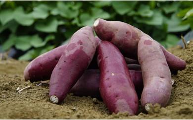 J-3 千葉県産 しっとり甘〜い!サツマイモ「紅はるか」10kg