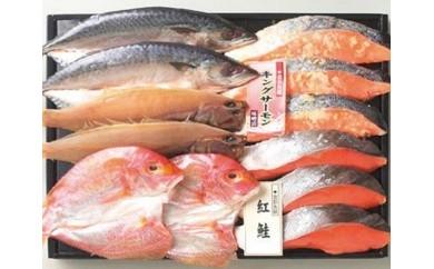 越前干物と漬魚詰合せ