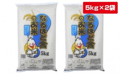 [№5685-0229]29年産秋田県産あきたこまち白米10kg(5kg×2袋)
