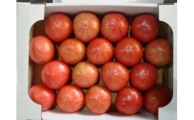 【先行予約】 010-034 伊豆の国産!大玉トマト(4kg)