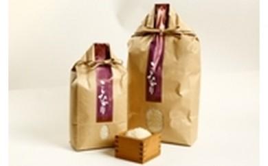 C-1 お米「こしひかり」5kg 4袋