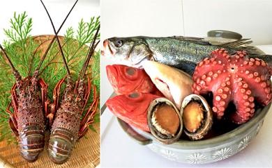 [№5651-0400] 漁師鍋 地魚特選素材セット