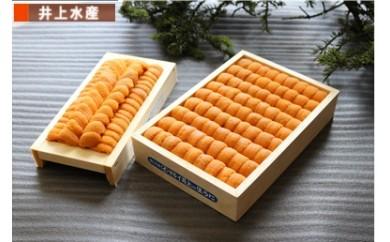 CC-07019 エゾバフンウニ弁当並べ詰め250g×1枚・折130g×2枚[400355]