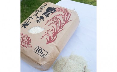 [№5651-0508]【H30年新米】南房総市産コシヒカリ10kg(9月中旬から配送開始)