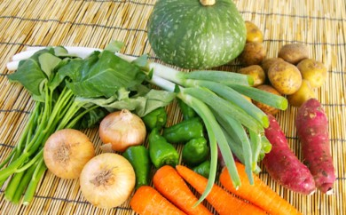 [№5651-0500]南房総産とれたて野菜ボックス