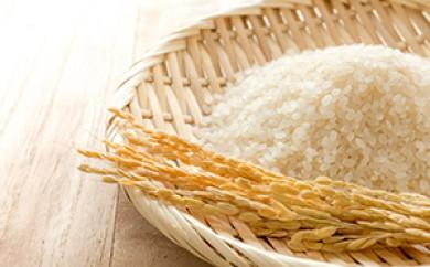 [№5651-0360]低農薬米・無農薬米 白米セット