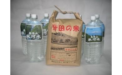 NA242 平成29年産 升田の米ササニシキ5kgと鳥海山氷河水