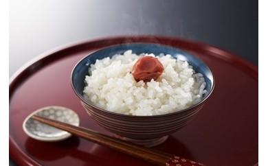 [B213]柏崎産無洗米コシヒカリ