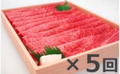 D-7奥出雲和牛赤身スライス500g ×5 【定期便対応】