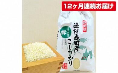 [№5873-0339]遠州森町産コシヒカリ 精米10kg(12カ月連続お届け)