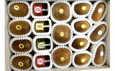 181 掛川産カラフルキウイ4種+キウイジャムセット(ギフト箱入)