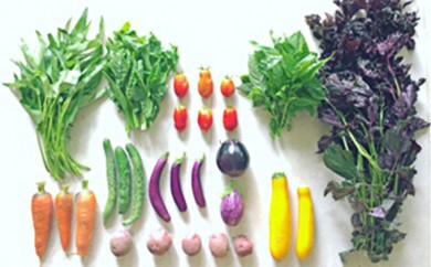 [№5735-0239]瀬戸内産 旬の野菜セット