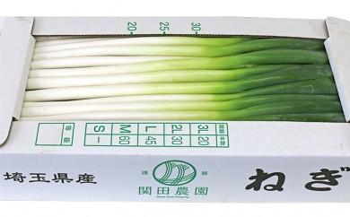 [№5672-0141]関田農園の「厳選 長ねぎ(剥き)」 箱5kg