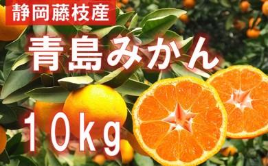 [№5809-1915]静岡県産 青島みかん S~2L 10kg