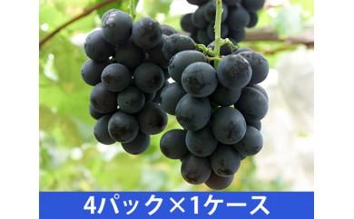 No.082 ブドウ詰め合わせ(産地直送)