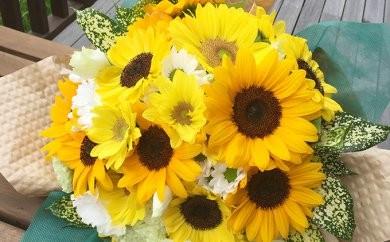 [№5651-0396]南房総産 生花(ひまわり) 花束 約30本