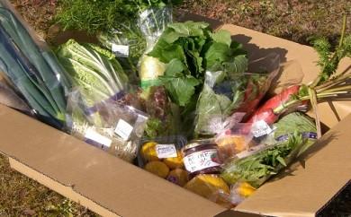 A-46.【旬の時期に届く、季節限定の野菜】 季節の農産物お楽しみセット