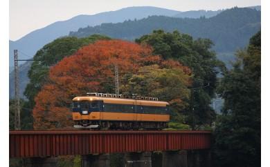 E10 大井川鐡道本線と南アルプスあぷとライン 全線乗車の旅(3日間2名様)