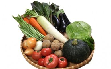 [№5632-0087]●新鮮な 旬の野菜の 詰合せ●