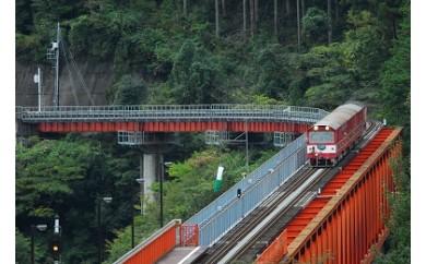 B06 大井川鐵道本線と南アルプスあぷとライン全線乗車の旅(2日間1名様)