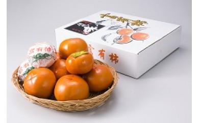 30B013 岐阜県網代産 富有柿(贈答用)4L以上 20個