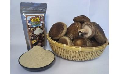 北上市の絶品シイタケ 粉末(40g)と生椎茸(約600g)のセットB