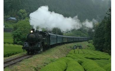 C02 SL列車と南アルプスあぷとラインの旅(2日間1名様)