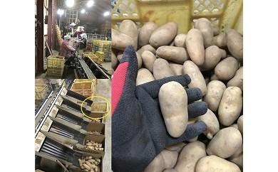 010022. 豊作会農園 メークイン[Sサイズ:30kg](30セット限定)