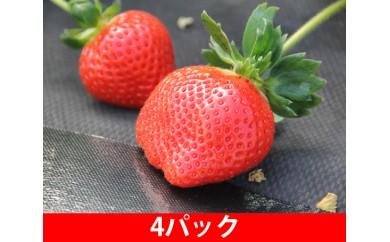No.078 あまおうセット(産地直送)