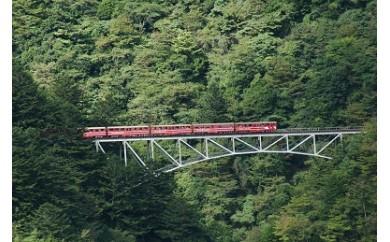 A17 南アルプスあぷとライン 渓谷を行く絶景鉄道の旅(2日間1名様)