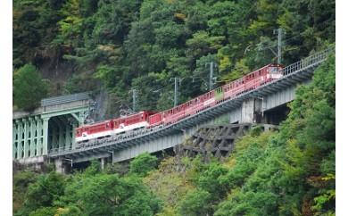 G06 SL列車と南アルプスあぷとラインの旅(3日間2名様)