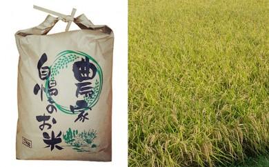 [№5856-1027]北條農園の特別栽培米[コシヒカリ]