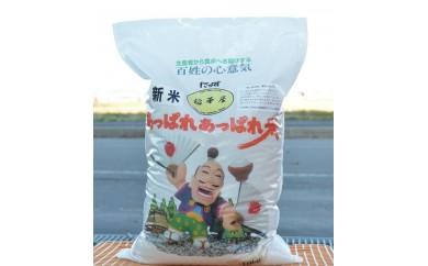 A055 平成30年産 稲華屋のあっぱれあっぱれ米(ゆめぴりか無洗米・10㎏)