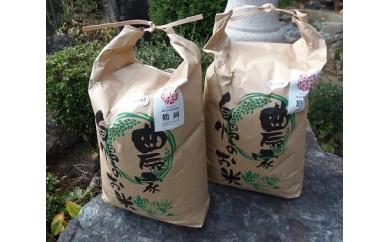 B29-117 平成29年産米鶴岡産特別栽培米はえぬき・ひとめぼれ(各5kg)