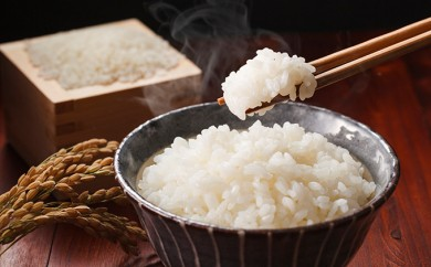 [№5856-1085]行田のお米 忍城献上米10kg 3ヶ月連続お届け