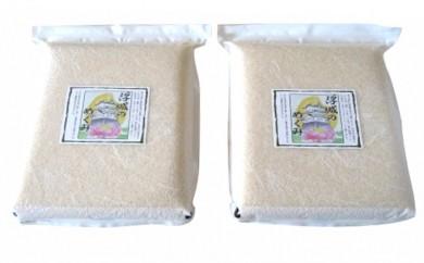 [№5856-1082]行田のお米  忍城献上米20kg